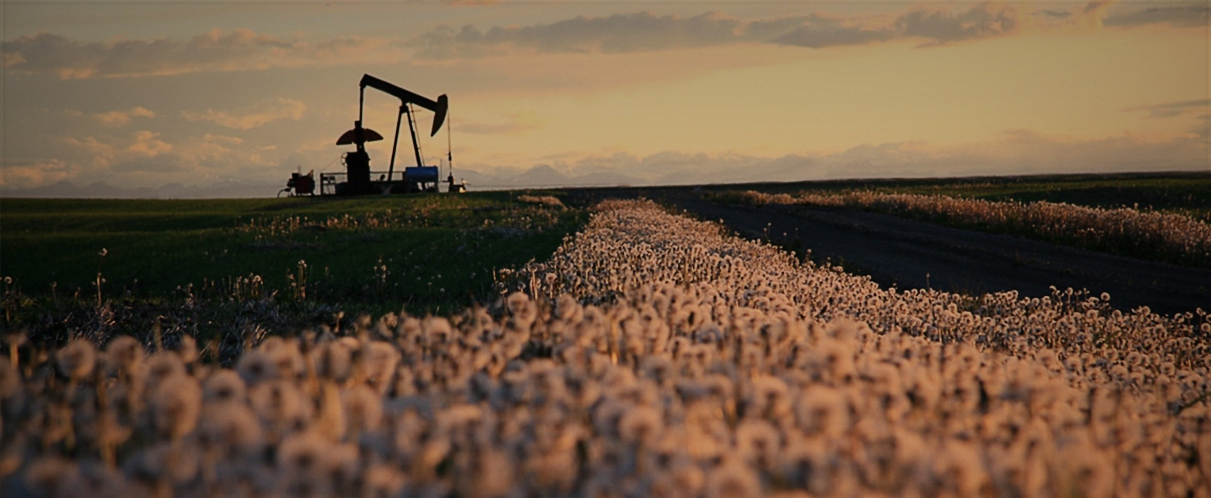 4 Easy Ways to Save on Your Oilfield Energy Bill